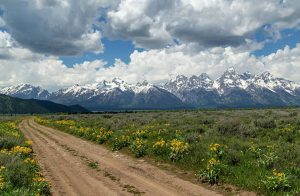 Photograph - Teton Country Road by Michael Chatt