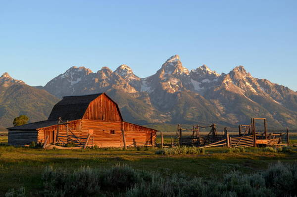Wall Art - Photograph - Teton Morning Glow by Michael Morse