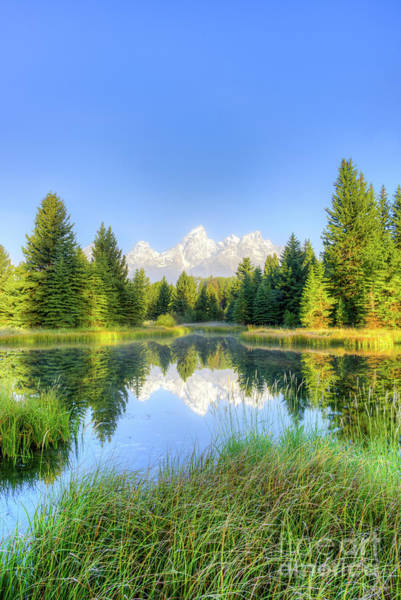 Photograph - Teton Sunrise Vertical by Paul Quinn