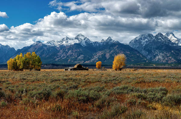 Photograph - Tetons And Mormon Row by Scott Read