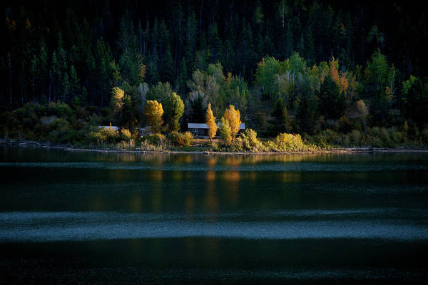 Photograph - Tetons Lakeshore In Autumn by David Chasey