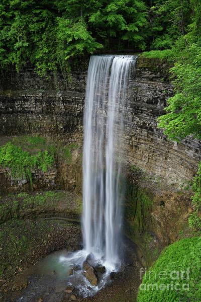Photograph - Tew Falls Vertical by Rachel Cohen