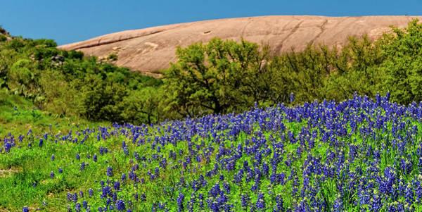 Texas Bluebonnets And Enchanted Rock 2016 Art Print