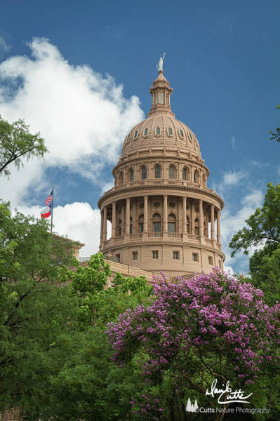 Texas Capital Building Art Print