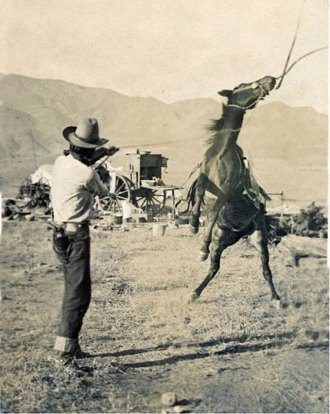 Painting - Texas Cowboy, 1910 Photo, Roping Horse,wagon by Celestial Images