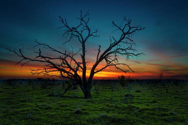 Photograph - Texas Farmland Sunrise by Michael Ash
