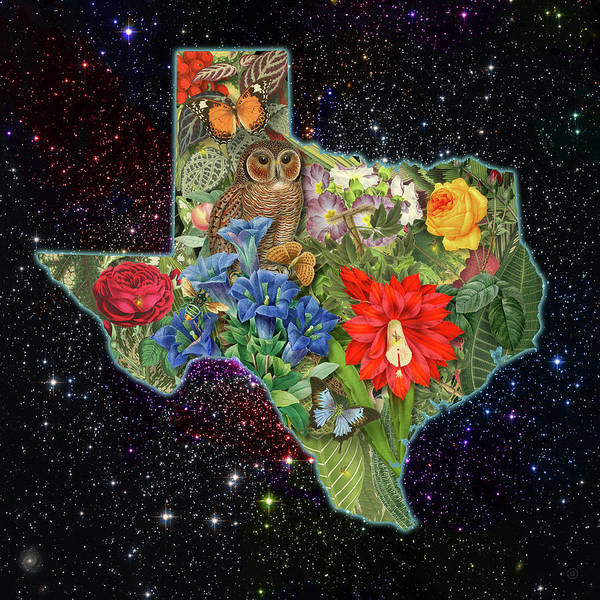 Digital Art - Texas Night Map by Gary Grayson