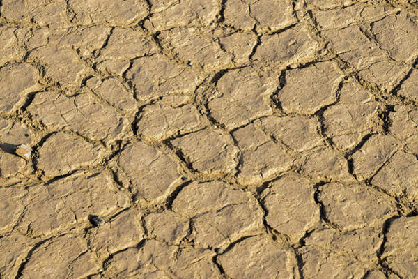 Photograph - Texture Of Dry Chunks Earch Soil by Alex Grichenko