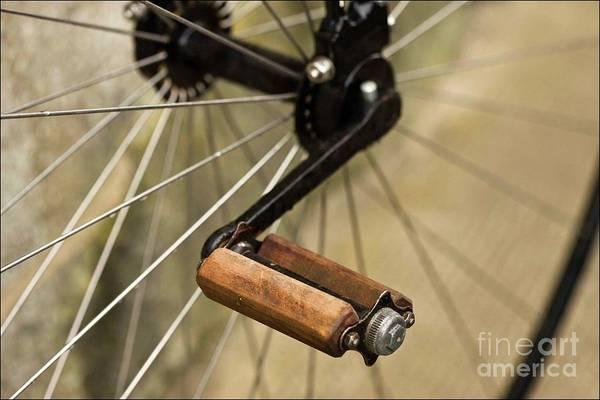 Photograph - The Pedal by Liz Alderdice