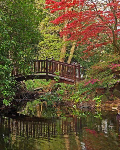 Photograph - Thai Temple Gardens by Gill Billington