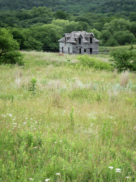 Photograph - The Abandoned Farm In Summer by Mary Lee Dereske