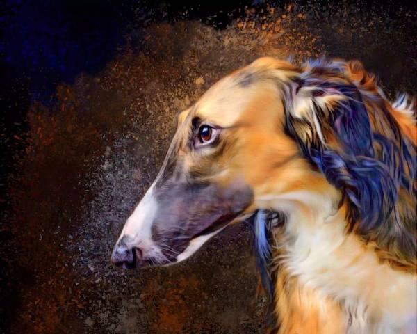 Digital Art - The Afghan Hound  by Scott Wallace Digital Designs