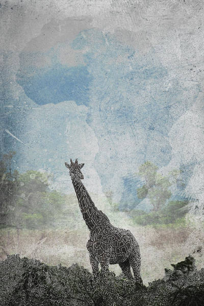 Photograph - The African Giraffe by Mary Lee Dereske