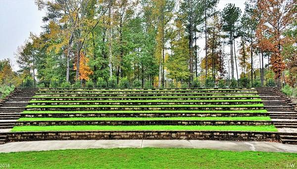 Photograph - The Amphitheater Steps At Irmo Sc Community Park by Lisa Wooten