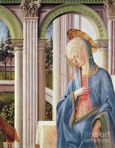 Wall Art - Painting - The Annunciation, Detail Of The Virgin Mary, Oil On Panel, Detail By Fra Filippo Lippi by Fra Filippo Lippi