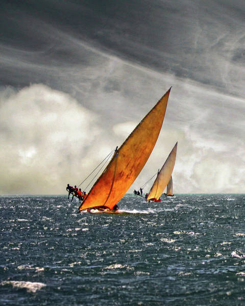 Wall Art - Photograph - The Art Of Swahili Dhow Racing by David Schweitzer