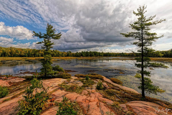 Granite Digital Art - The Artistic Cranberry Bog by Phill Doherty