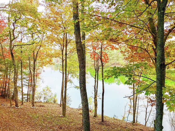 Photograph - The Autumn Lake by Susan Leggett
