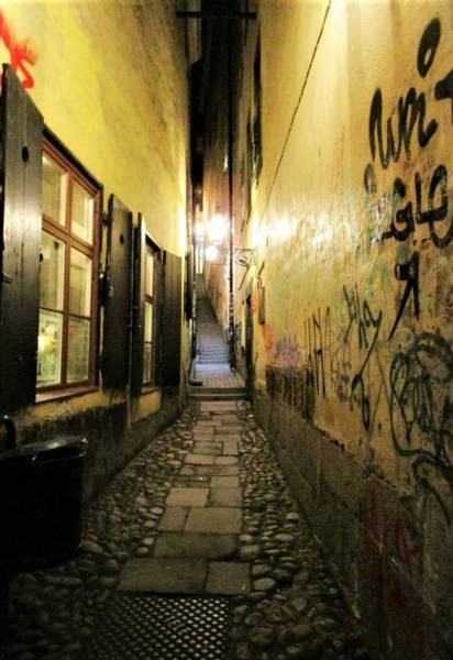 Photograph - The Back Alley by Rosita Larsson