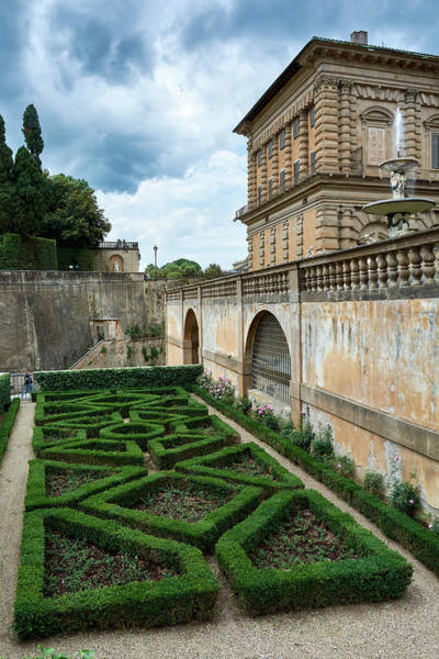 Photograph - The Back Of The Pitti Palace by Fine Art Photography Prints By Eduardo Accorinti