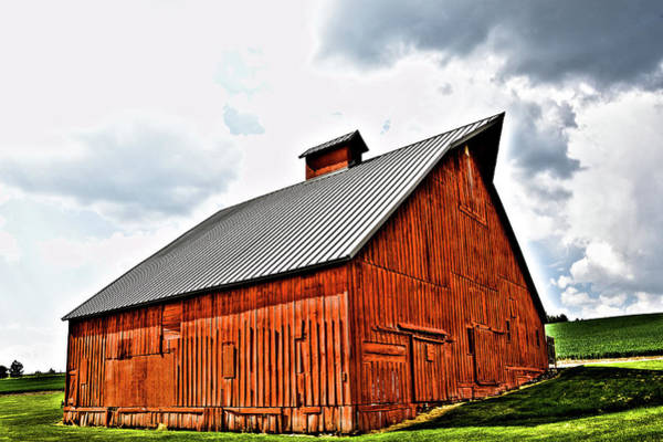 Photograph - The Barn At The Arboretum by David Patterson