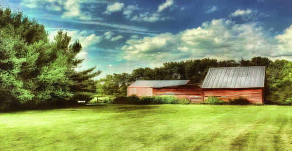 Photograph - The Barn by Reynaldo Williams