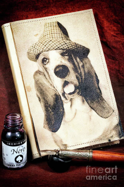Hats For Sale Photograph - The Basset Hound Diaries by John Rizzuto