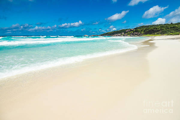 Wall Art - Photograph - The Beach Called Grande Anse Located On by Jakub Barzycki