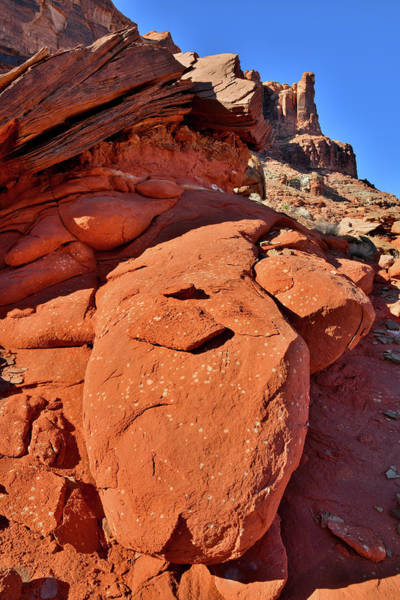 Photograph - The Beautiful Colors Of Utah's Red Rocks by Ray Mathis