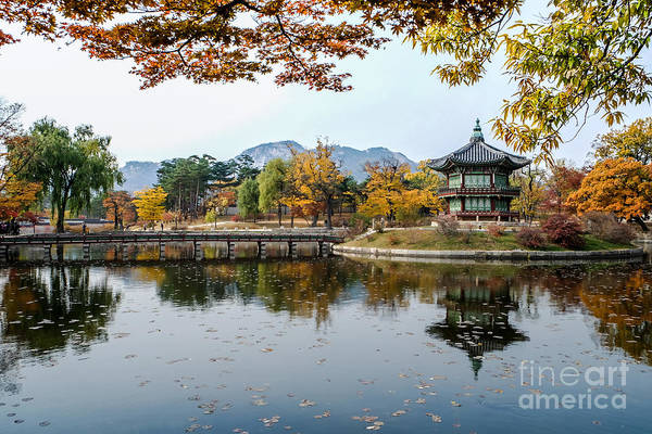 Wall Art - Photograph - The Beautiful Palace In Autumn,seoul by Ommlett