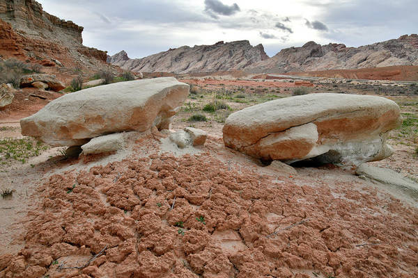 Photograph - The Beautiful San Rafael Swell And Desert by Ray Mathis