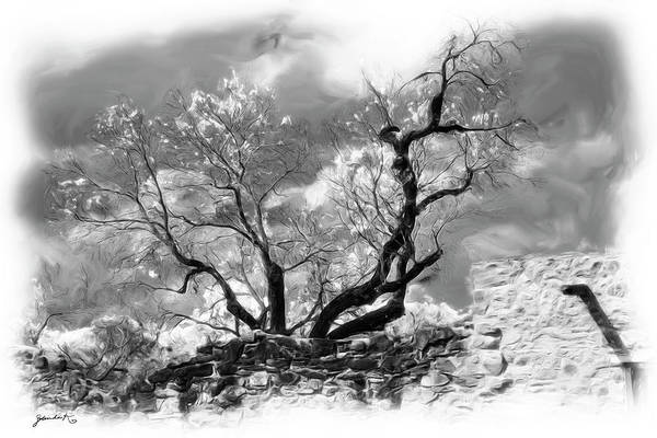 Photograph - The Beauty Of Mother Nature by Gerlinde Keating - Galleria GK Keating Associates Inc