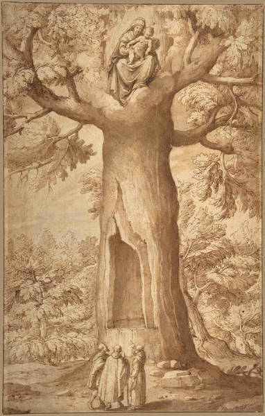 Drawing - The Beech Tree Of The Madonna At La Verna by Jacopo Ligozzi