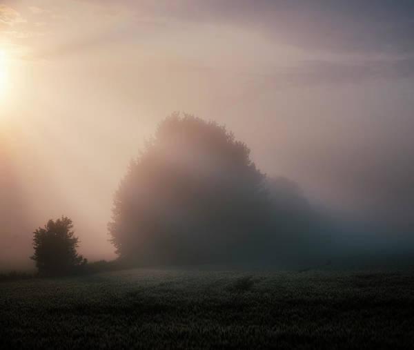 Photograph - The Beginning Of Autumn by Dan Jurak