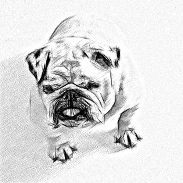 Wall Art - Drawing - The Best Friend by Karl-Heinz Luepke