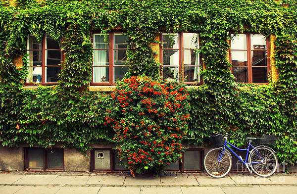 Wall Art - Photograph - The Bicycle In Copenhagen by Oleg Podzorov