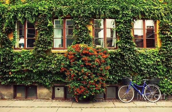 Urban Life Wall Art - Photograph - The Bicycle In Copenhagen by Oleg Podzorov
