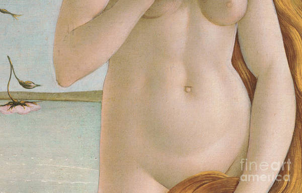 Wall Art - Painting - The Birth Of Venus Detail 1485, Tempera On Canvas by Sandro Botticelli