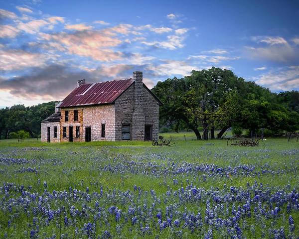 Photograph -  Bluebonnet House  by Harriet Feagin