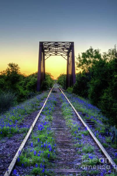 Texas Bluebonnet Photograph - The Bluebonnet Railroad by Paul Quinn
