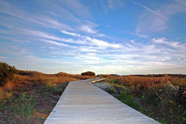 Marsh Grass Photograph - The Boardwalk by Daniela Duncan