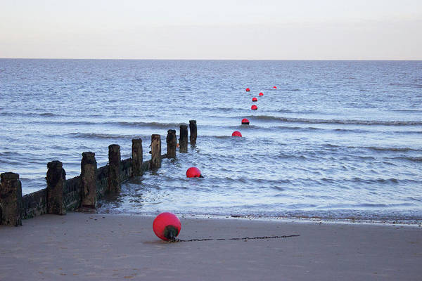 Wall Art - Photograph - The Bouys by Martin Newman