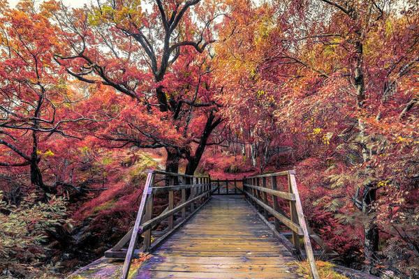 Photograph - The Bridge To Ben Nevis In Autumn by Debra and Dave Vanderlaan