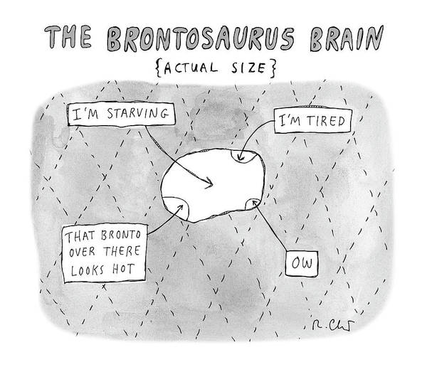 Drawing - The Brontosaurus Brain by Roz Chast