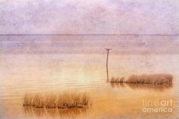 Wall Art - Digital Art - The Calm Of The Water by Randy Steele