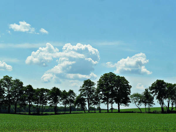 Photograph - The Captivating Country Side by Cyryn Fyrcyd