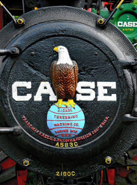 Photograph - The Case Eagle by Paul W Faust -  Impressions of Light