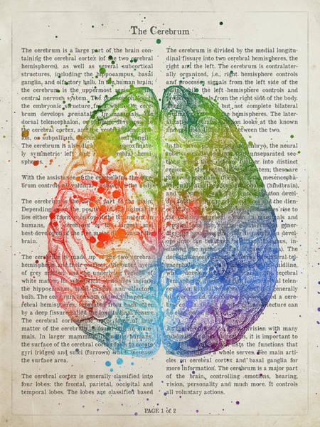 Wall Art - Digital Art - The Cerebrum Anatomy Illustration 03 by Aged Pixel