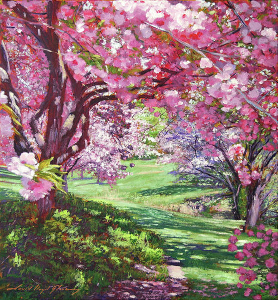Painting - The Cherry Blossom Canopy by David Lloyd Glover