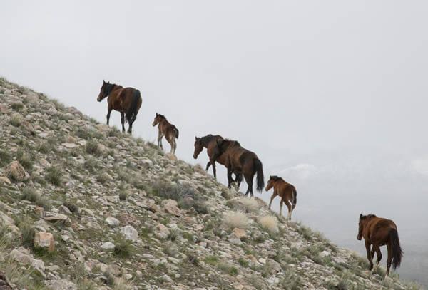 Photograph - The Climb by Kent Keller